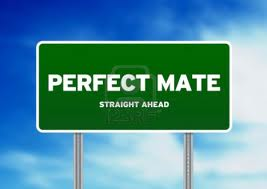 Looking for the Perfect Christian Mate?